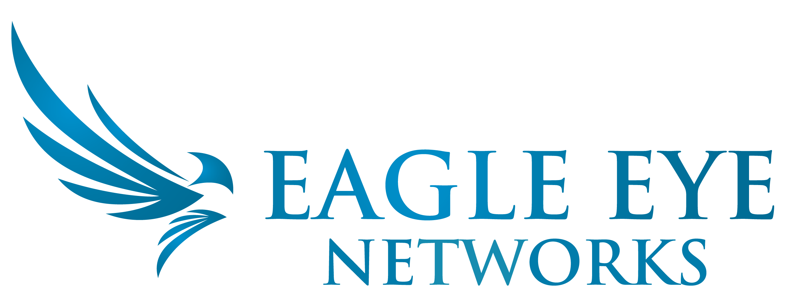EagleEyeNetworks