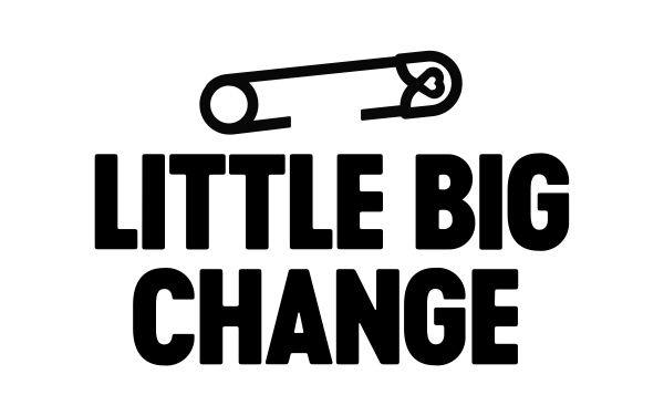 Page d'accueil du Centre d'aide Little Big Change Wallonie