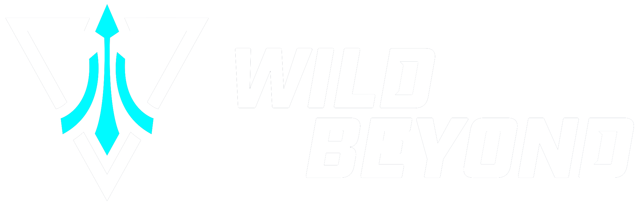 Wild Beyond Help Center home page