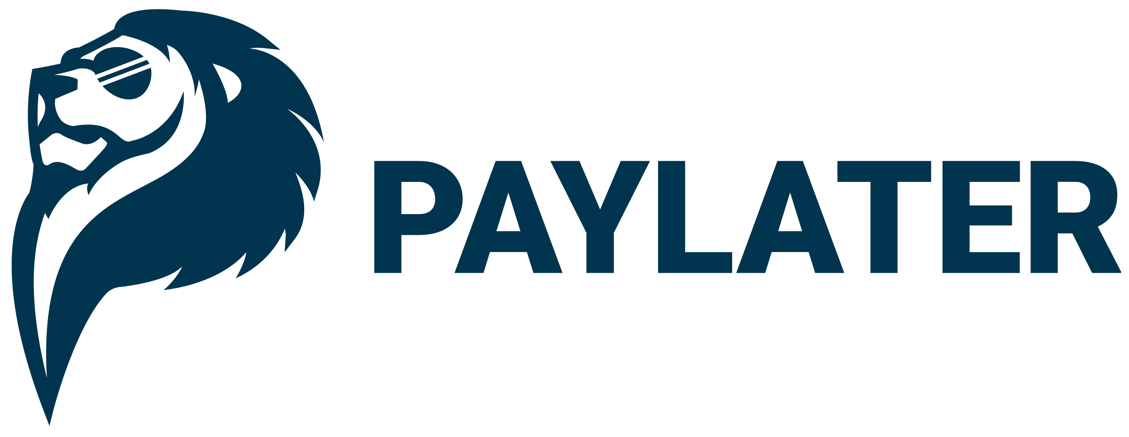 PAYLATER Malaysia Help Center home page